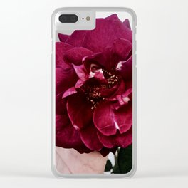 I'll soak up the pain Clear iPhone Case