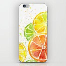 Fruit Watercolor Citrus iPhone Skin