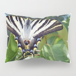 Swallowtail Buttterfly Resting on Oleander Leaves Pillow Sham