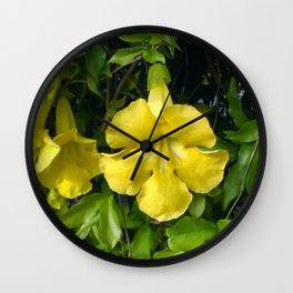 Cat's Claws Vines Wall Clock