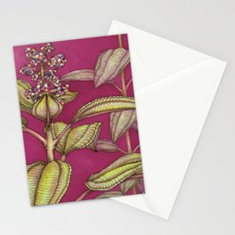From Puerto Rico: Part 1 Stationery Cards
