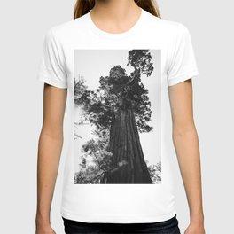 Sequoia National Park IX T-shirt