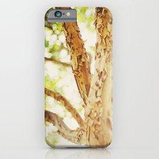 Trees/Light Slim Case iPhone 6s