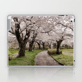 Row of cherry blossom trees Laptop & iPad Skin
