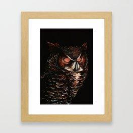 Owl, Barred Owl, Bird Framed Art Print