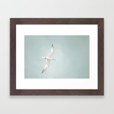 Free Bird  Framed Art Print
