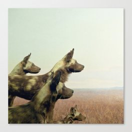 Hi, we are the wild dogs Canvas Print