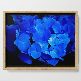 Deep Blue Hydrangea Serving Tray