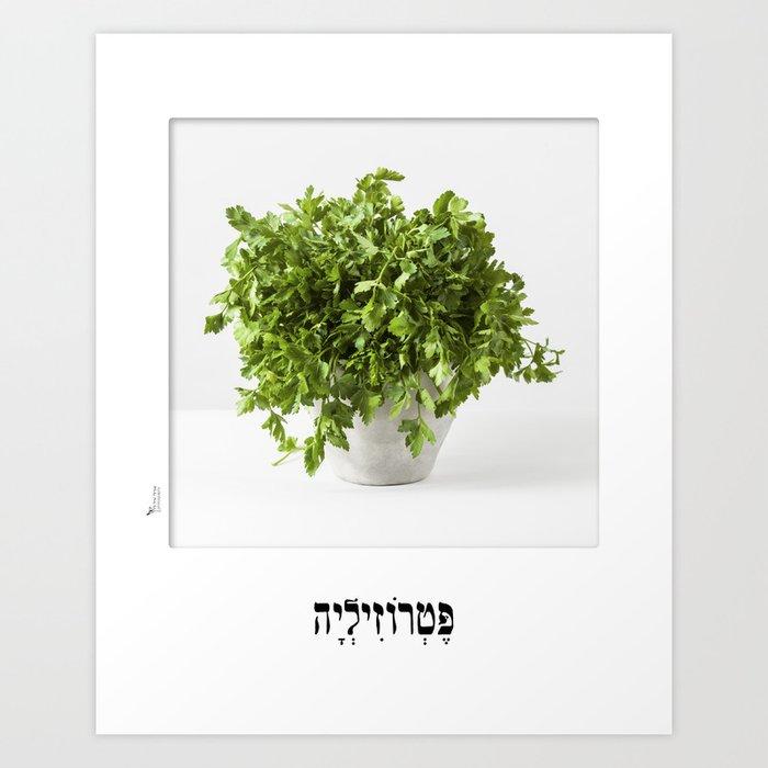 parsley herbal planter poster Art Print