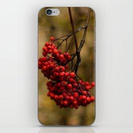 Vermilion III iPhone Skin
