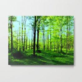 Sky Blue Morning Forest Metal Print