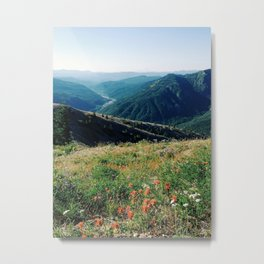 Gifford Pinchot National Forest Metal Print