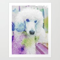 poodle Art Prints featuring poodle by Sarah Jane Connors