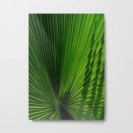 Palm Leves Metal Print