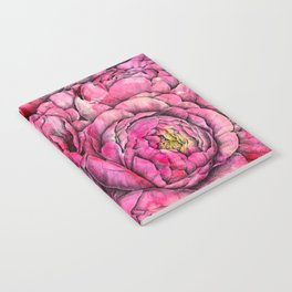Peonies three pink Notebook