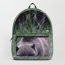 Grizzly mother & cub in Jasper National Park | Canada Backpack