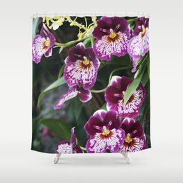 Longwood Gardens Orchid Extravaganza 60 Shower Curtain