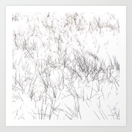 Grass in the snow Art Print
