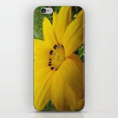yellow feeling iPhone & iPod Skin