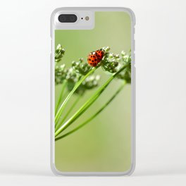 Spring 79 Clear iPhone Case