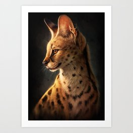 Enigmatic Soul Art Print