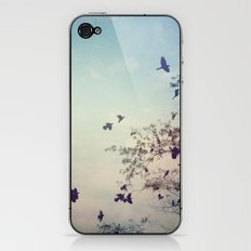 Birds of Clearwater iPhone & iPod Skin