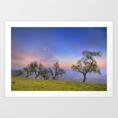 Almonds and Moon Art Print