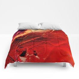 Autumn Abstract Comforters