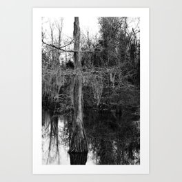 moss and tree Art Print
