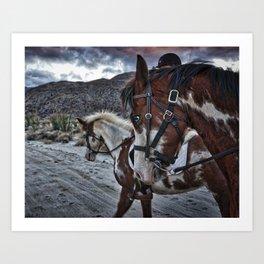 Horses, Anza Borrego, California Art Print