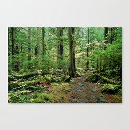 Forest Garden Canvas Print