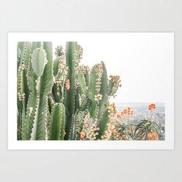 Giant Cactus Art Print