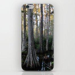 Cypress swamp iPhone Skin