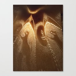 Cats carrying lights Canvas Print
