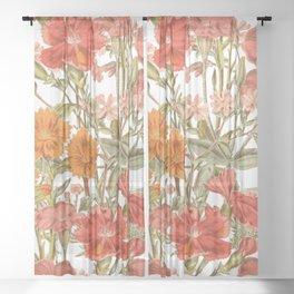 Bloomfield Meadow - Clove Pinks Sheer Curtain