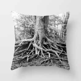 Tree of Life and Limb Throw Pillow