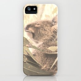 Koala in tree eating gum leaves iPhone Case