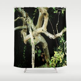 Green Perspective Shower Curtain