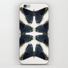 Callosamia Promethea iPhone & iPod Skin