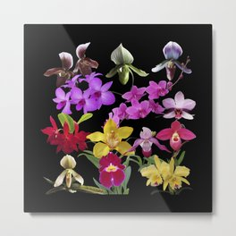 Orchids Galore Metal Print