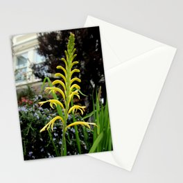 It's Only Natural Stationery Cards