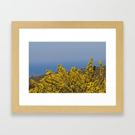 Landscape on mountain with blue sky Framed Art Print