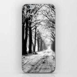 Winter Landscape (Winter Trees, Setting Sun) iPhone Skin