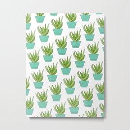 Aloe   Aqua Potted Plants Metal Print