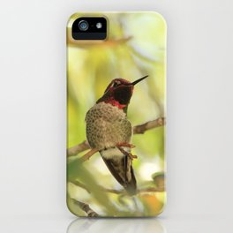 Sweet Hummingbird - Photography iPhone Case