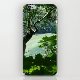 Willoughby Lake iPhone Skin