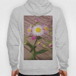 Urban Flower Hoody