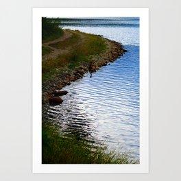 Water's Edge at Walden Pond Art Print