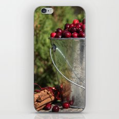 Berries and Spice iPhone & iPod Skin