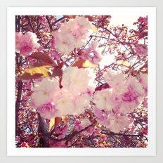 Blurry Blossoms Art Print